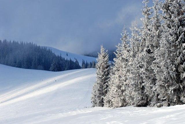 Температура повітря вночі 0-2° морозу, вдень 7-9° тепла.