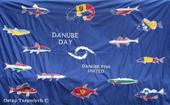 У Тячеві святкуватимуть День Дунаю