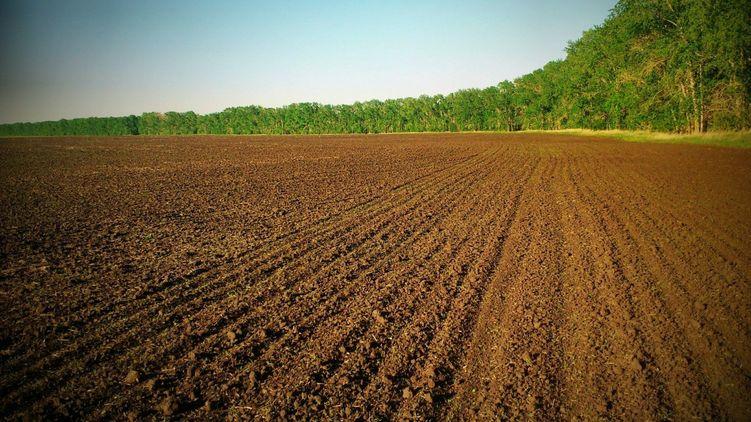Новий закон про ринок землі не вигідний її потенційним покупцям.