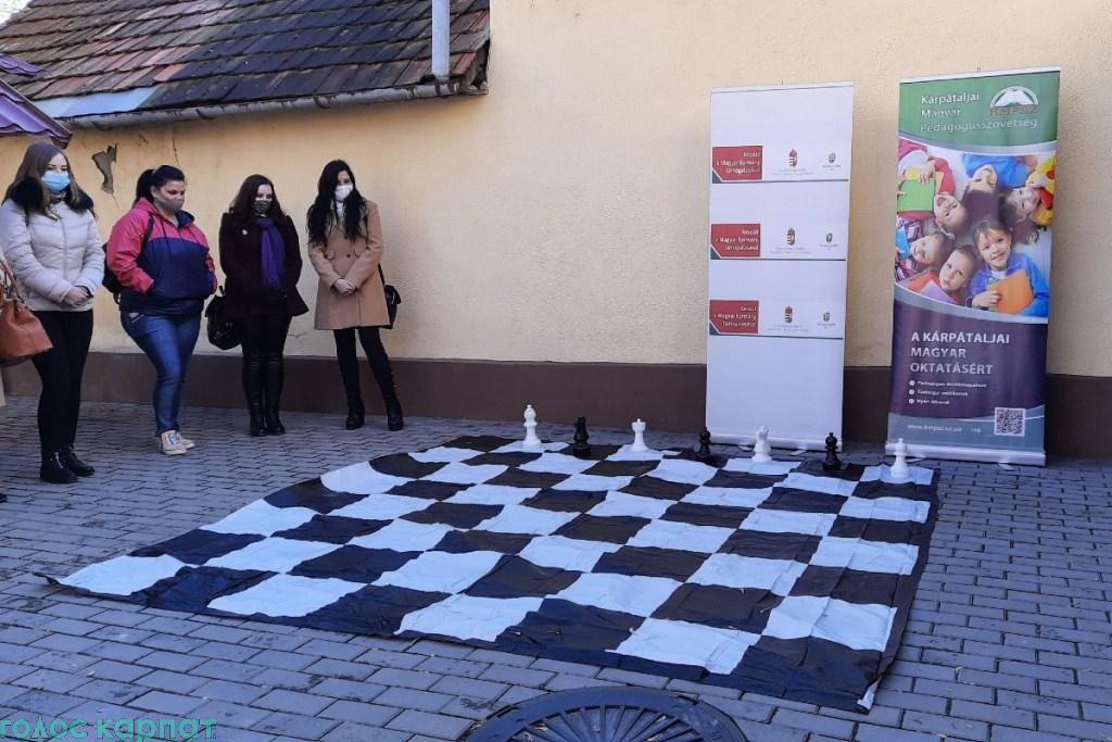В прошлом году государственный секретарь венгерского правительства по национальной политике ввел дистанционное изучение шахмат.