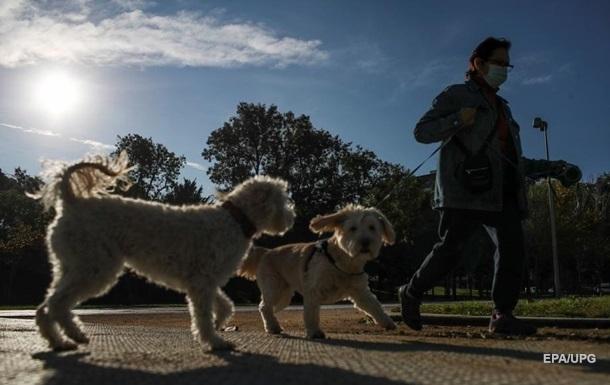 Фахівці швейцарського Федерального управління з безпеки харчових продуктів і ветеринарії займаються вивченням ризиків зараження людини коронавірусом через тварин.
