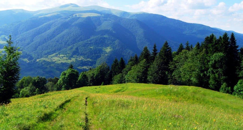 Цей указ про стимулювання економічного та туристичного розвитку Карпатського регіону.