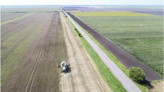 Верховна Рада проголосувала за подовження мораторію на продаж землі сільгосппризначення