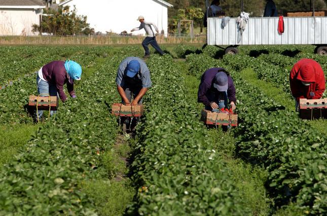 Боротьба за мігрантів. Україні варто приготуватися