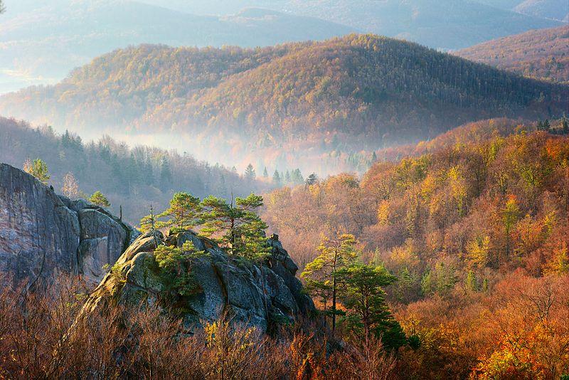 Температура повітря вночі 12-17°, вдень 22-27° тепла, в горах місцями вночі 7-10°, вдень 17-21° тепла.
