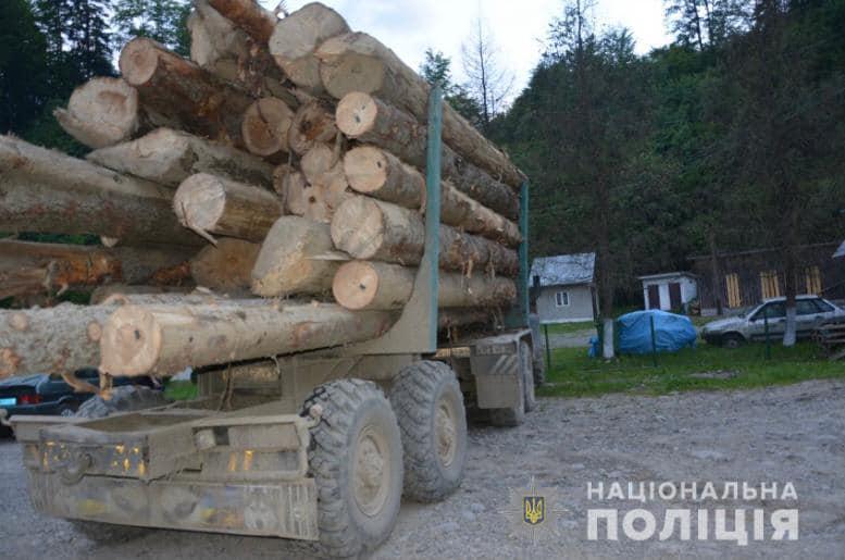 Сотрудники полиции Тюмени расследуют факт незаконной вырубки леса.