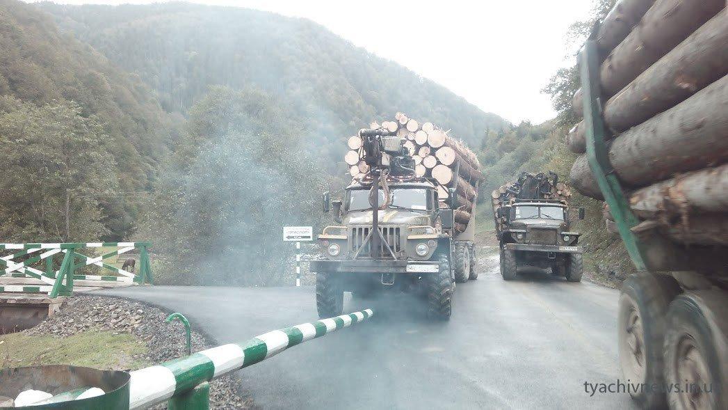 Нову дорогу в Німецькій Мокрій руйнують лісовози