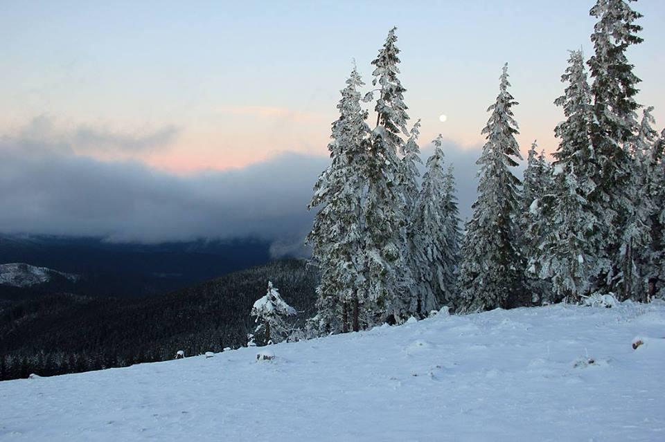 У високогір'ї Карпат намело більше 100 сантиметрів снігу