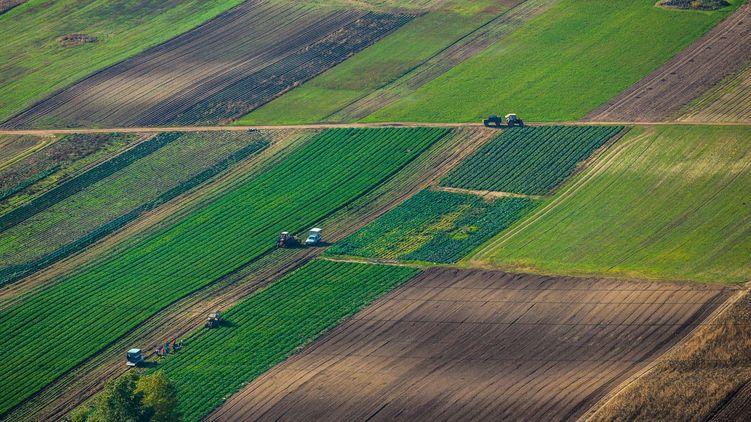 Зе-команда запускає процес продажу землі в Україні.