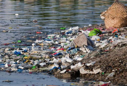 После дождей уровень воды в Тисе поднялся, а в его верхней части скопилось большое количество бытовых отходов.