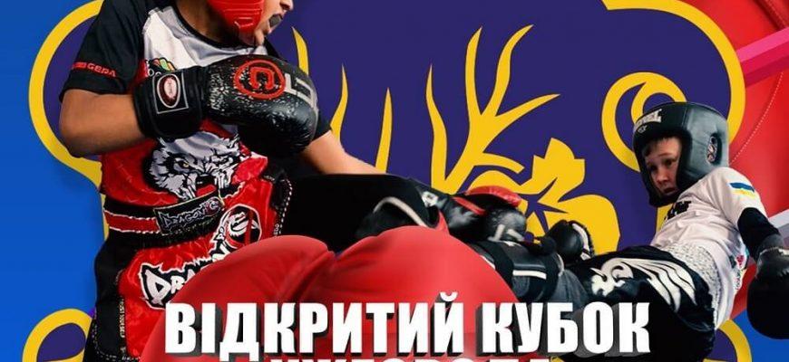 В воскресенье, 6 июня, в Ужхороде пройдет открытый городской кубок по кикбоксингу среди детей, юношей и юниоров.