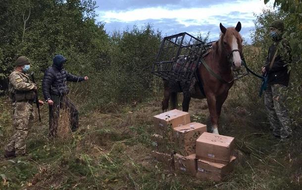 Прикордонники затримали чоловіка з конем, на спині в якого були закріплені клітки з