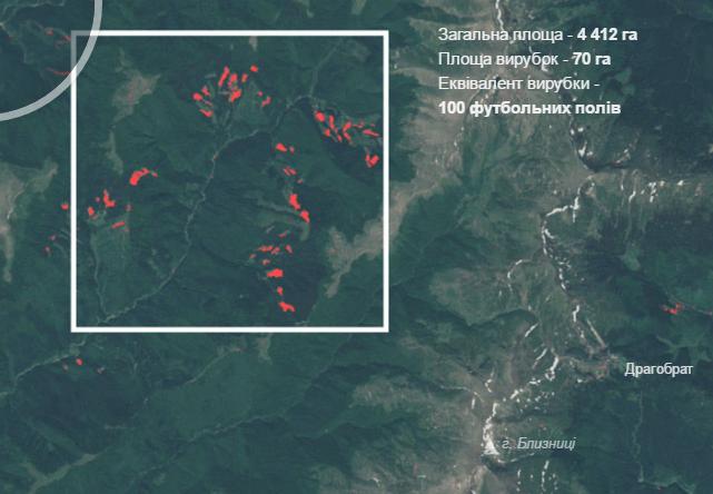 Де і скільки лісів вирубали в Карпатах? (інтерактивна карта)