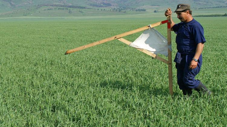 Президент Зеленський обіцяє продаж землі в два етапи.