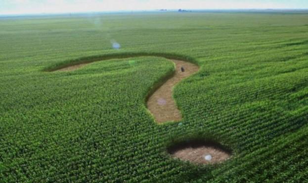 Земельні питання є одними з найактуальніших у всі часи. Нині – під час впровадження земельної реформи в Україні вони стоять особливо гостро.