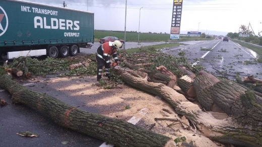 18 червня о 17:35 до оперативно-рятувальної служби надійшло повідомлення про падіння дерева на трасі Київ-Чоп неподалік с. Сюрте Ужгородського району.