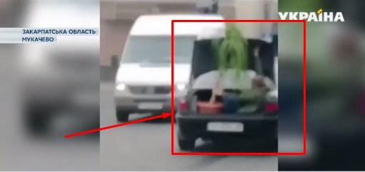 На Закарпатті чоловік оригінально вирішив проблему на вантажному таксі.
