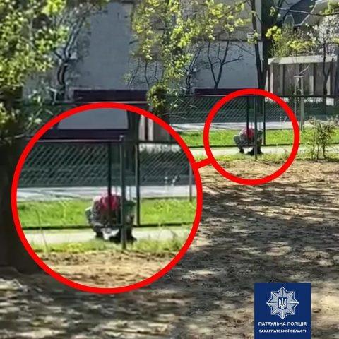 Мукачівські патрульні виявили особу, яка жорстоко поводилася із собакою.
