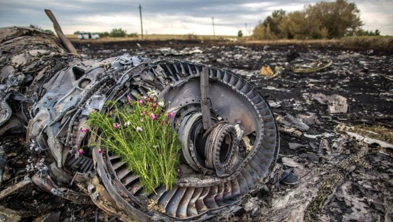 Нові рештки загиблих Boeing рейсу MH17 знайдено наДонбасі