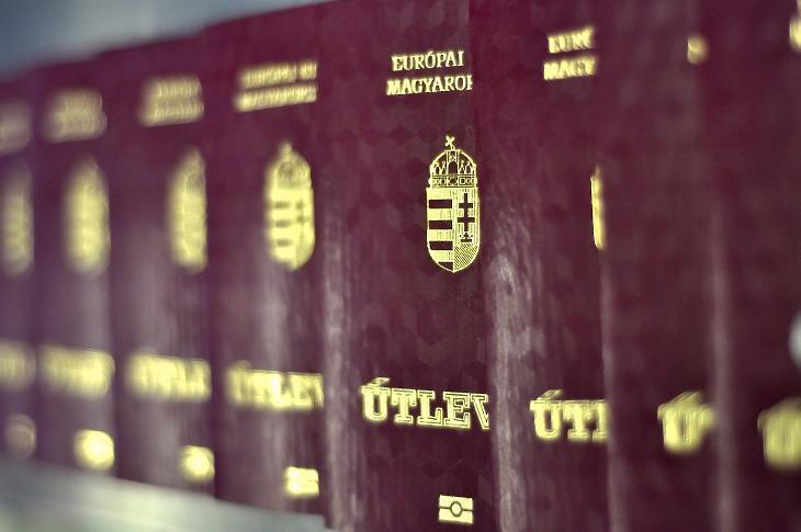 Що стосується осіб, народжених на території Радянського Союзу та України, Президент Республіки відкликав громадянство на підставі пропозиції Гергея Гуляша.