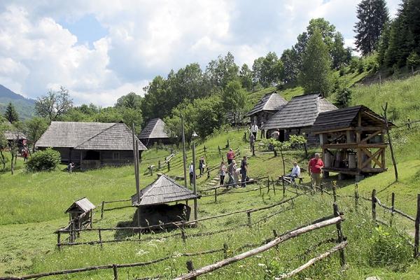 Більше половини населення Закарпаття проживає у сільській місцевості