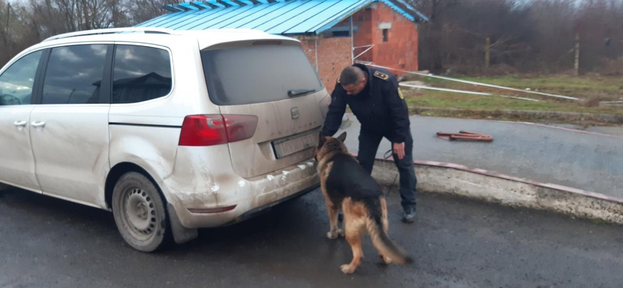 У «тенета» закарпатських митників на КПП Лужанка сьогодні потрапив дипломат-контрабандист, який намагався незаконно вивезти з України сигарети, вщент забиті у багажному відсіку автомобіля.