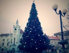 Концерти, запалення ялинки, шоу та феєрверки: сьогодні в Мукачеві розпочали святкування новорічно-різдвяних свят (Програма)
