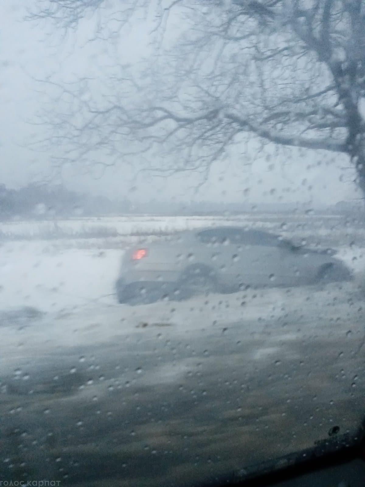 На Іршавщині авто вилетіло кювет та влетіло у дерево (ФОТО)