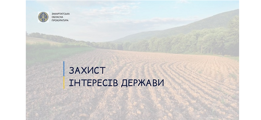 Йдеться про майнові комплекси радгосп-заводів Виноградівщини