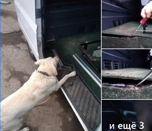 Службовий пес допоміг інспектору виявити сигарети, приховані у днищі мікроавтобуса.