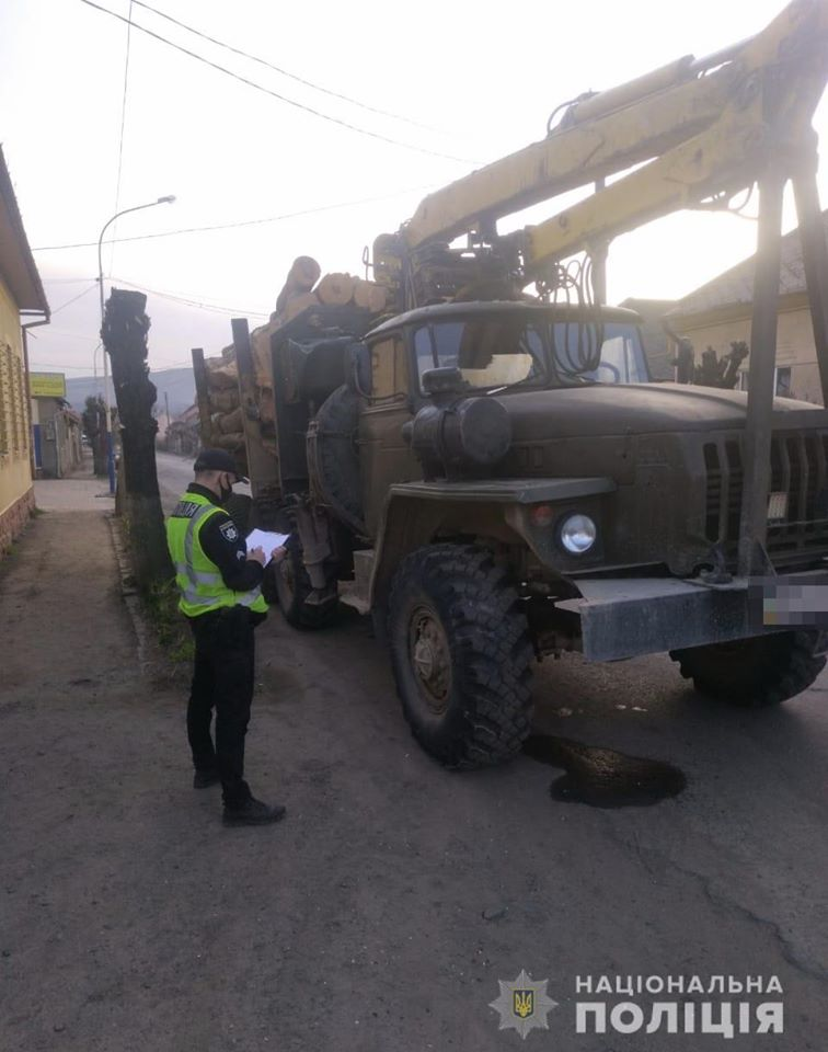 Інцидент трапився в селі Малий Березний.