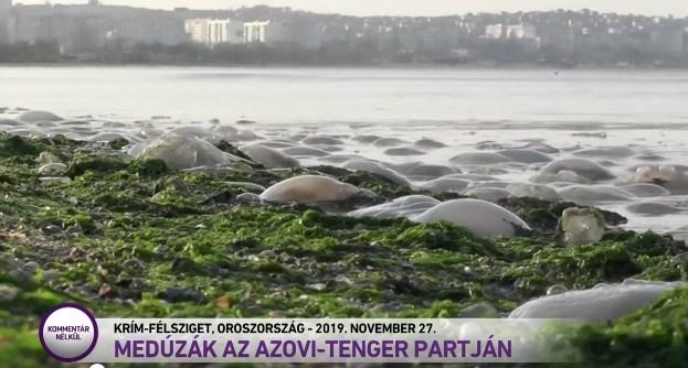 На угорському телеканалі M1 анексований Крим позначили як російську територію.