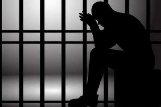 Судом задоволено клопотання слідчого, погоджене прокурором Мукачівської окружної прокуратури, та взято під варту місцевого жителя за підозрою у вчиненні ряду крадіжок із проникненням.