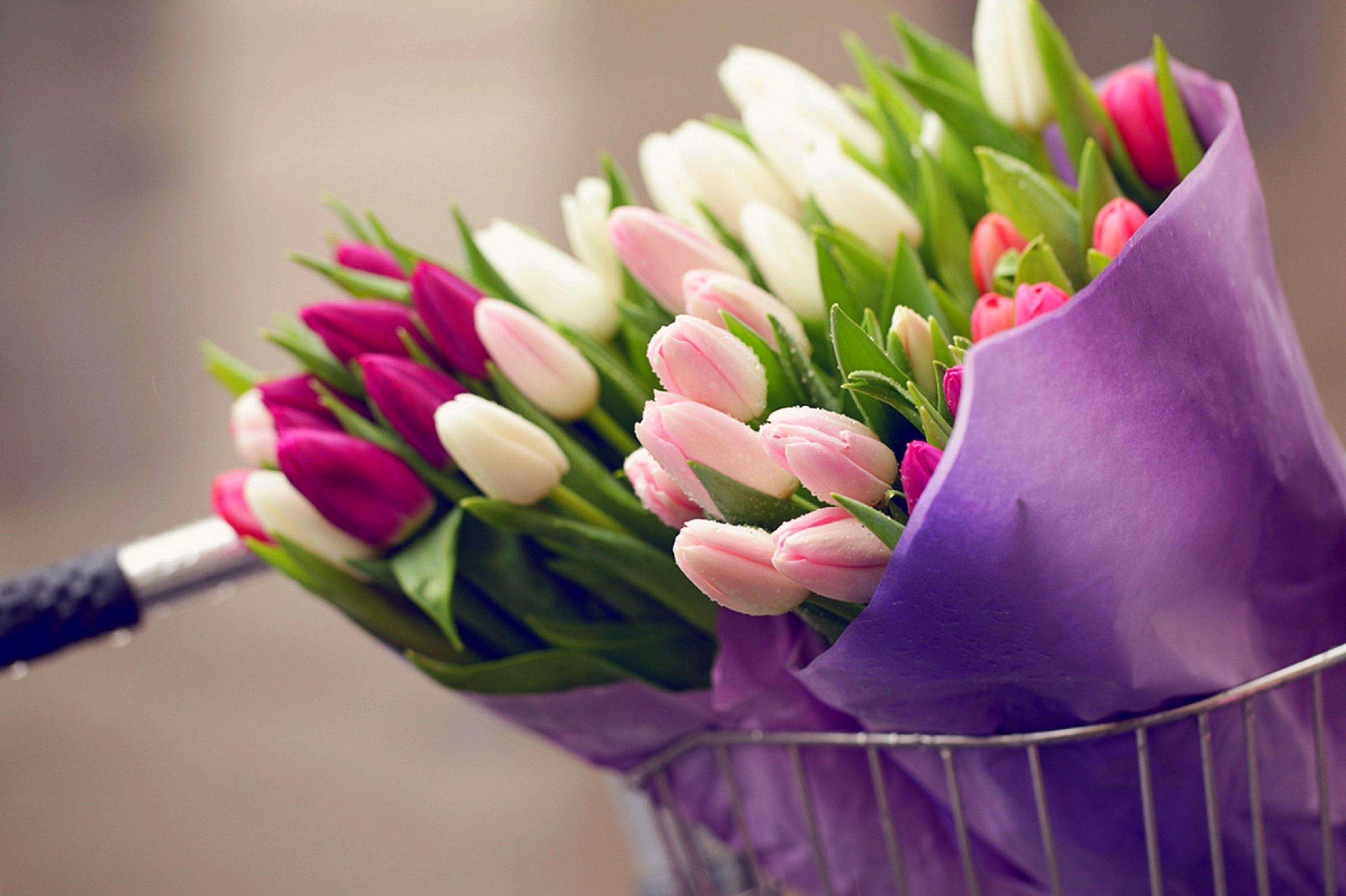 24 квітня народились: Волинець Лілія, Духнович Олександр та Химинець Юрій.