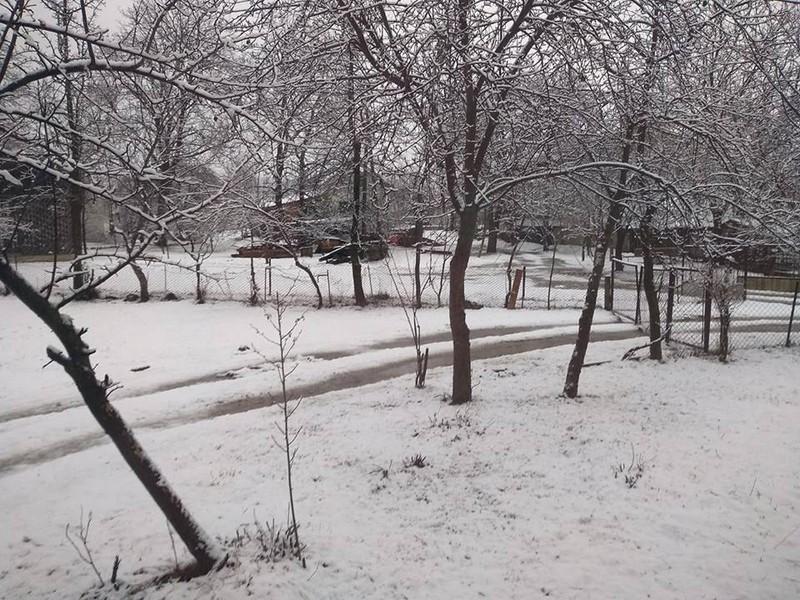 Гірські села на Закарпаті замело снігом (ФОТО)
