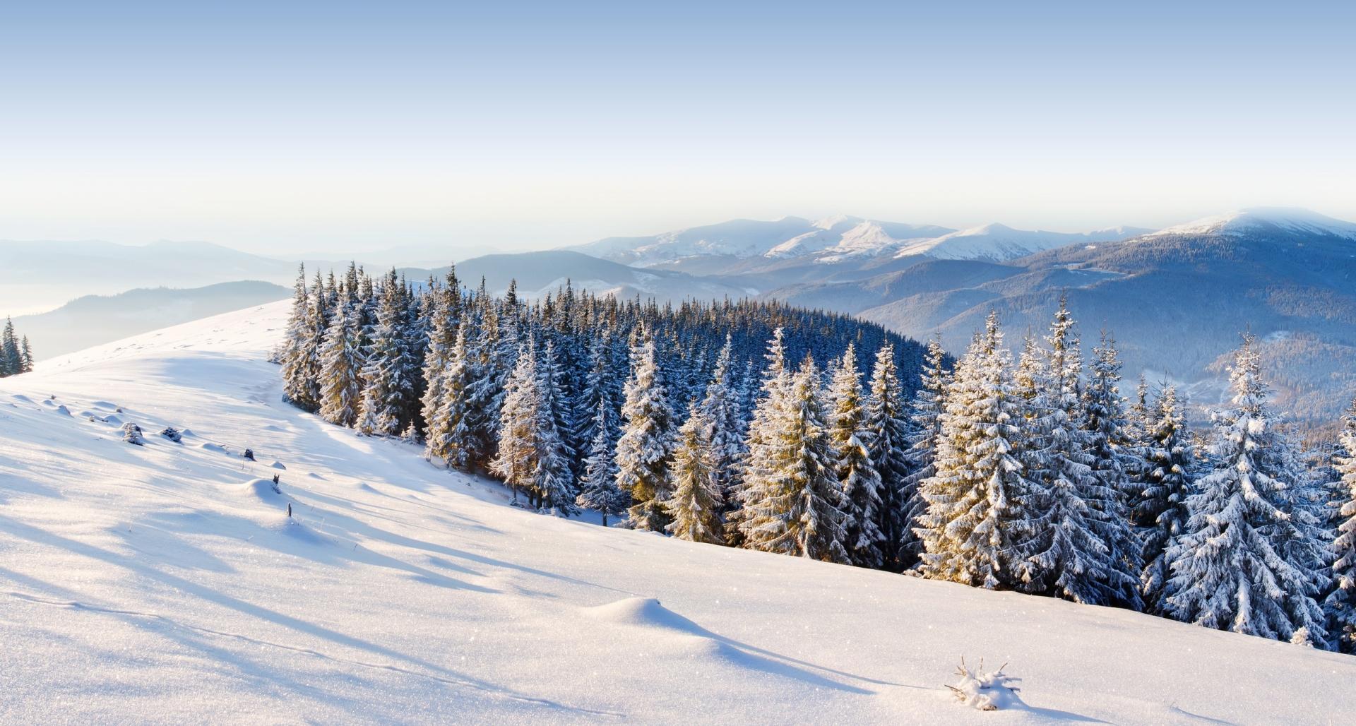 Температура повітря вночі 5-10° морозу, вдень 1-6° тепла.