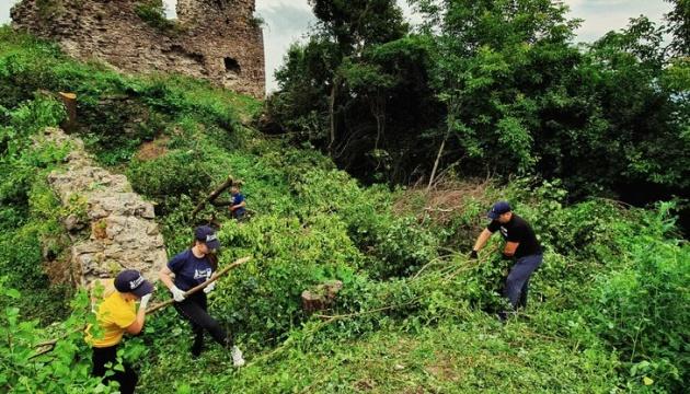 Руїни Королевського замку очистили від чагарників і сміття.