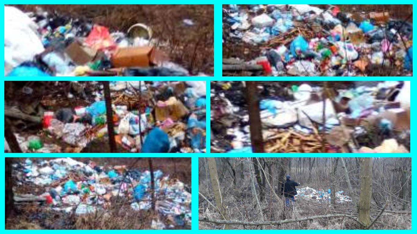 Гори сміття виявили на дамбі біля річки Тиса на Тячівщині.