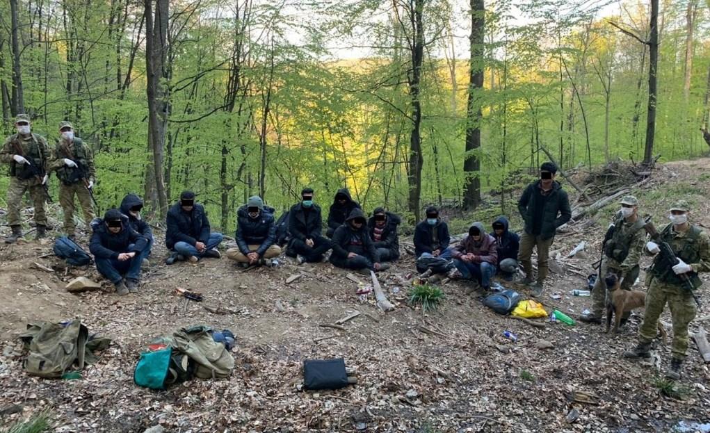 Прикордонники Чопського загону затримали у лісі групу нелегалів.