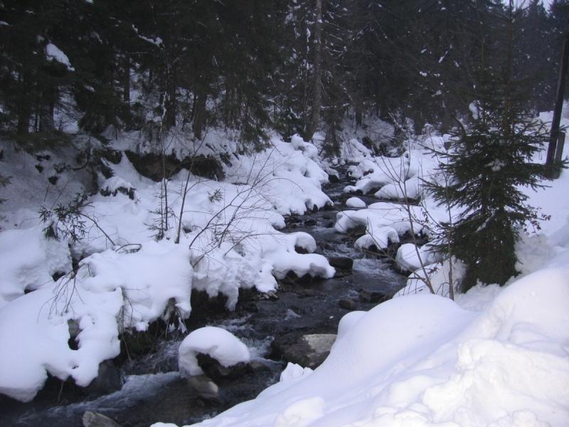 Температура повітря вночі 5-10° морозу, вдень 1-6° тепла, у горах місцями вночі 12-14° морозу, вдень 0-2° морозу.