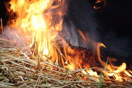 12 вересня на Іршавщині, в с. Підгірне, під навісом згоріло 20 тонн сіна.