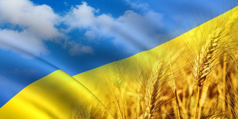 7 дивовижних фактів про Україну очима іноземців