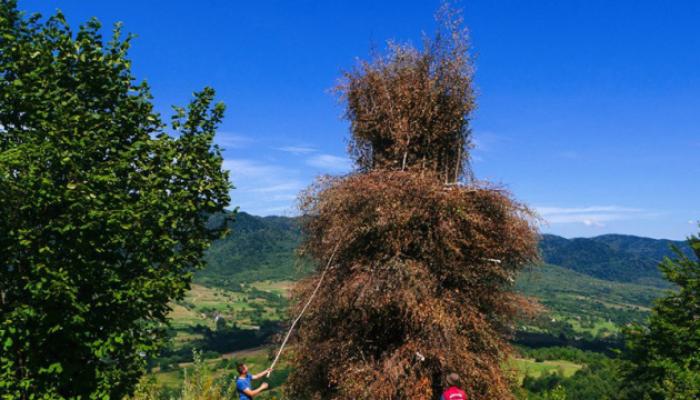У закарпатському селі Вишка сьогодні відбудеться перший фестиваль