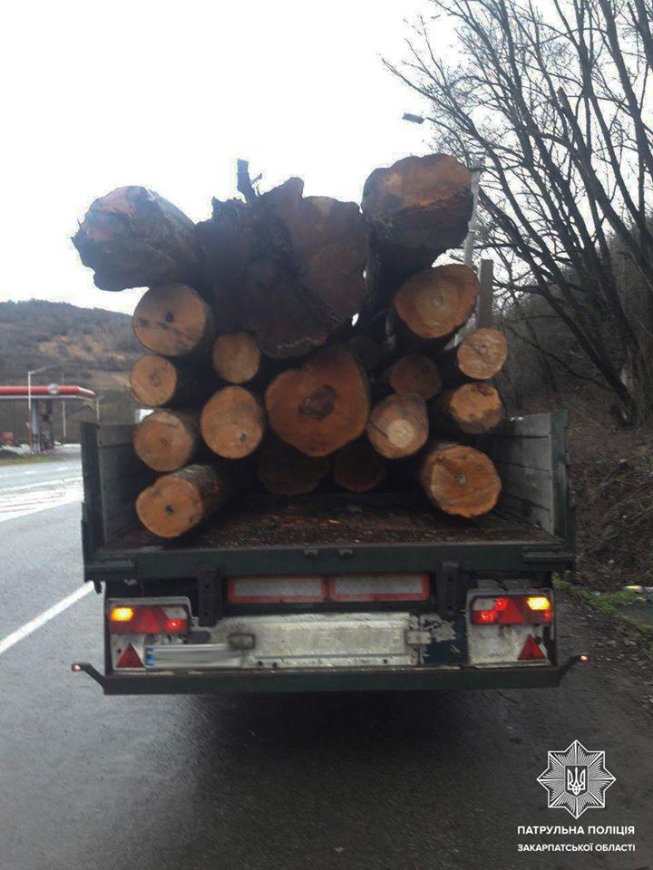 Закарпатські патрульні виявили громадянина, який, ймовірно, незаконно здійснював перевезення деревини.