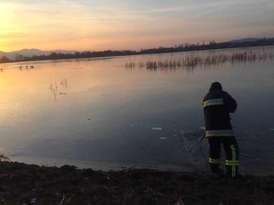 9 лютого тячівські рятувальники розгорнули рятувальну операцію заради лебедів.