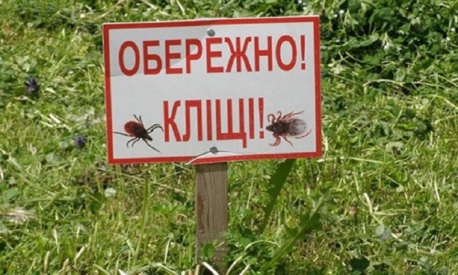 Влітку все більше людей відпочиває на природі і лікарі нагадуть, що прогулянки можуть закінчитися укусами кліщів. Ці маленькі комахи небезпечні тим, що переносять інфекційні хвороби.