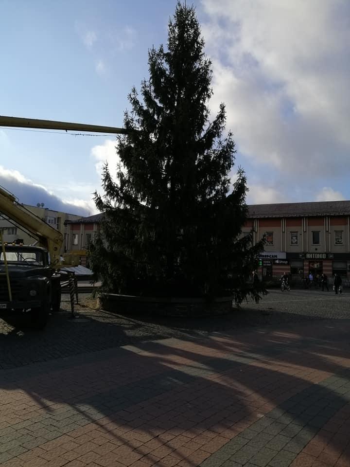 Монтаж святкової красуні відбувся сьогодні, 29 листопада.