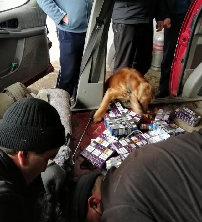 Сьогодні, у пункті пропуску «Вилок» прикордонники Мукачівського загону спільно з працівниками митниці попередили спробу незаконного переміщення до Угорщини сигарет.