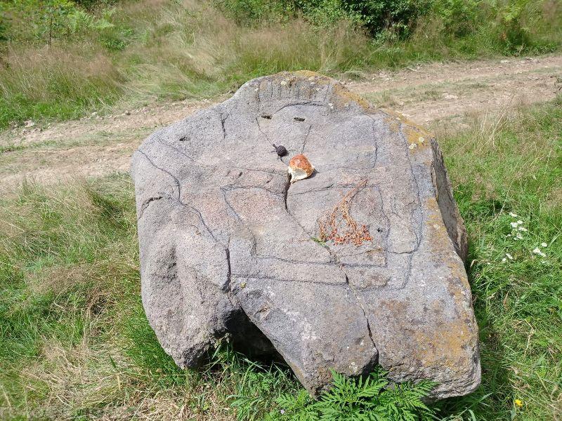 Дерев'яні ідоли та камінь-жертовник: у Карпатах знаходиться унікальне «Місце сили» ФОТО