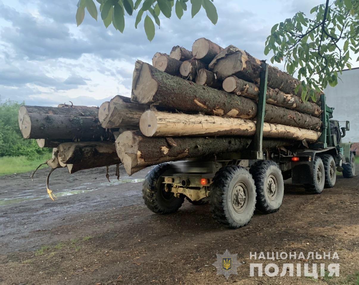 Учора, 9 червня, співробітники групи реагування патрульної поліції у селищі Дубове зупинили для перевірки «УРАЛ», завантажений деревиною.